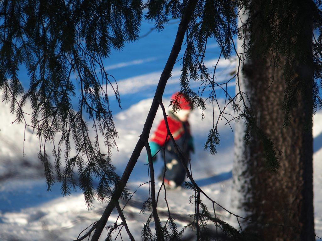 lapsi kävelee lumella, puiden oksien lomassa