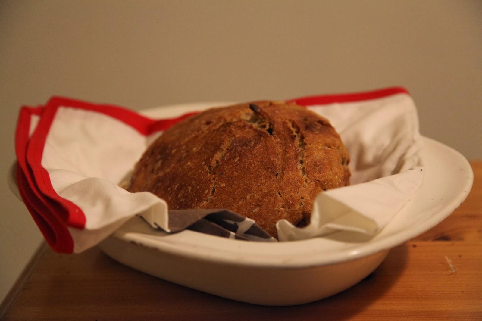 leipa savipadassa