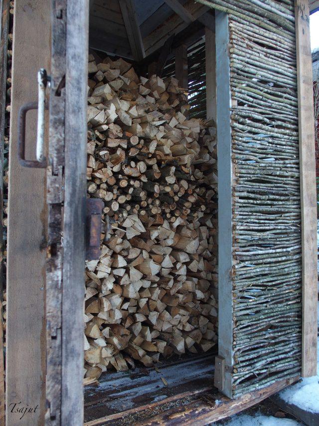 riukuseinäinen puuvaja täynnä puita
