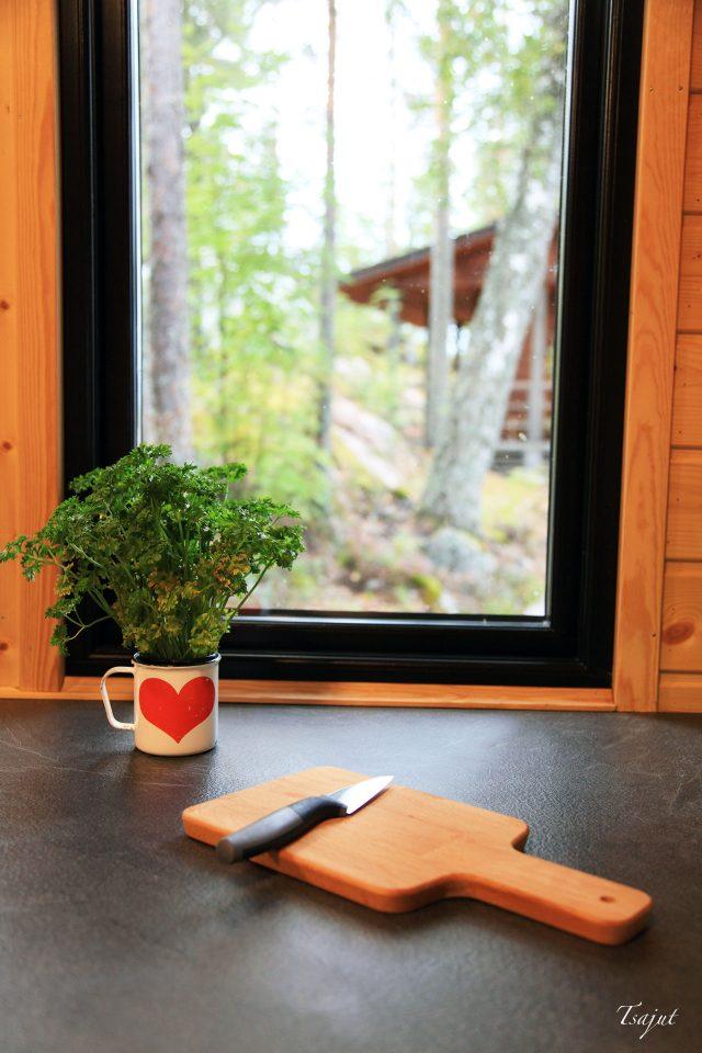 persilja ikkunan edessa