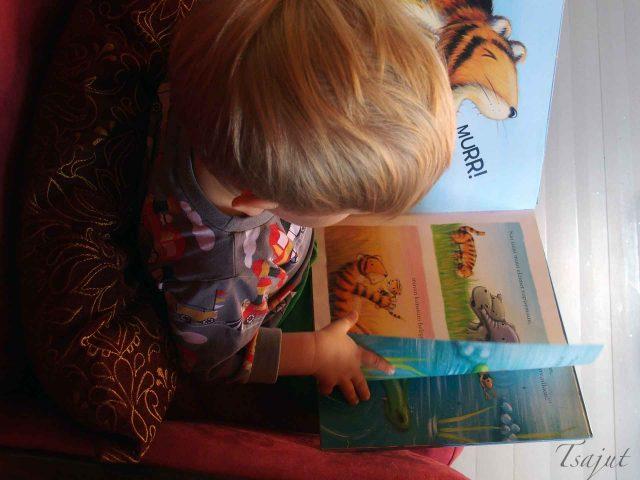 lapsi selaa kirjaa