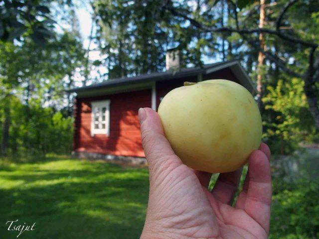 vaalea omena ja punainen tupa